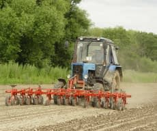 Front hoeing cultivator 12x30 cm for onion (3x150 cm)