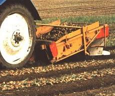 Onion lifter SU1M (1,50)