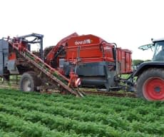 Carrot harvester GB I